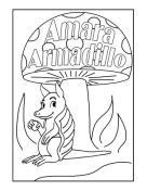 DYK armadillos_Page_1